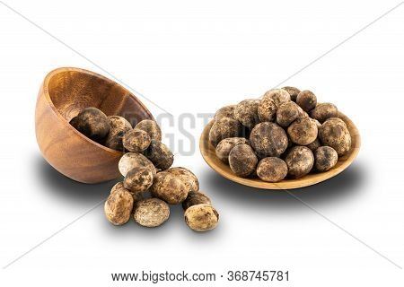 Mushroom Hygroscopic Earthstar Or False Earthstar In A Wooden Bowl And In A Wooden Plate On White Ba