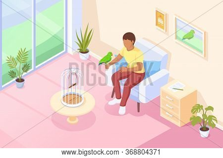 Pets, Parrot Bird Sitting At Owner Hand, Vector Isometric Illustration. Girl Woman Or Boy Man In Cha