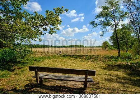 A Wooden Bench Overlooking Scenic Landscape With Heather Under A Blue Cloudy Sky