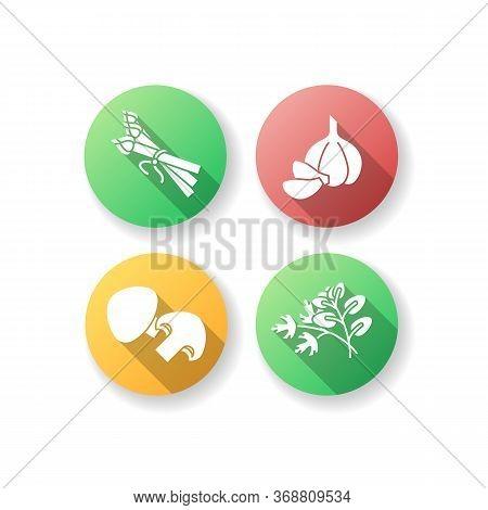 Vegan Salad Ingredient Flat Design Long Shadow Glyph Icons Set. Asparagus Spear. Whole Garlic. Fresh
