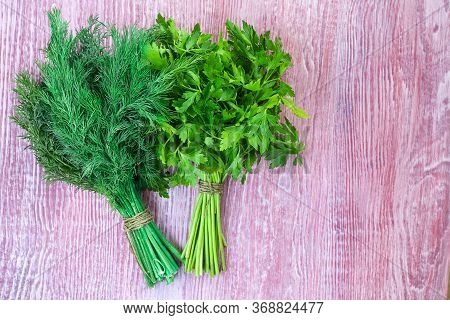 Two Bunches Of Green Parsley And Dill On Crared Red Textured Wooden Background. Horizontal With Copy