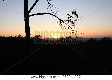 A Gorgeous Evening And Leafless Tree. Sunset Point Of Chiraidongri Mandla Road.