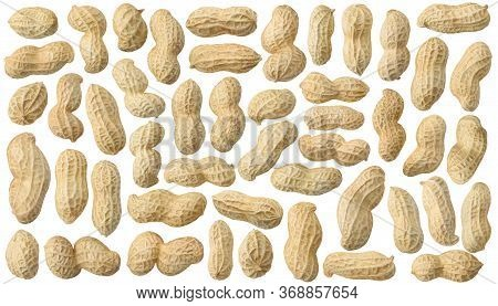 Isolated Peanuts. Collection Of Raw Peanuts In Shells Isolated On White Background