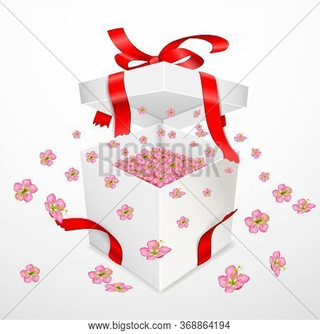 Open Square Box With Pink Cherry Blossoms Flying Out. Torn Red Satin Ribbons With A Bow. Spring Gift