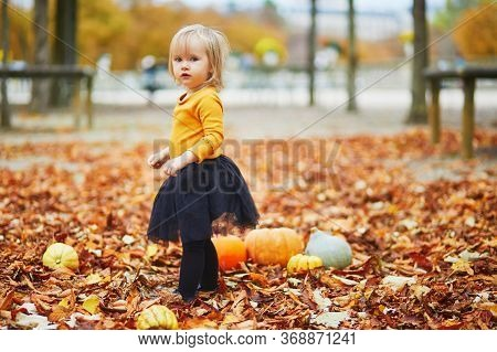 Adorable Toddler Girl In Orange T-shirt And Black Tutu Playing With Colorful Pumpkins Lying On The G