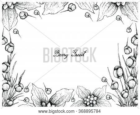 Berry Fruit, Illustration Frame Of Hand Drawn Sketch Of Dwarf Dogwood Or Cornus Canadensis And Sea G