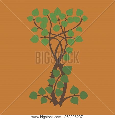 Bushes With Leaves, Green Lush Shrubs, Plants Detail Of Nature. Vector.