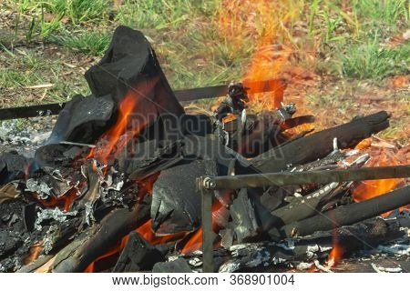 Bonfire Close-up. Orange Flame Of Fire On A Background Of Green Grass. Bonfire In The Nature. Coals