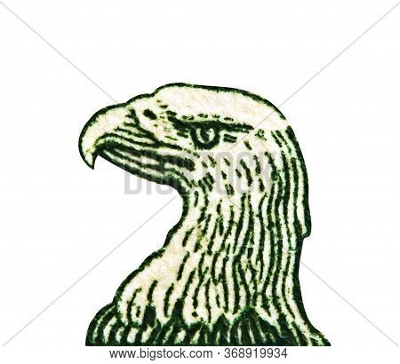 American Eagle Head Is Isolated With One Dollar Bill At Maximum Magnification. 1 One Dollar Usa,  Ea