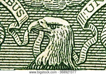 American Eagle With One Dollar Bill At Maximum Magnification. 1 One Dollar Usa,  Eagle. Concept For