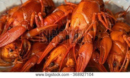 Boiled Crayfish On An Iron Plate. Boiled Red Crayfish Background For Menu. Top View, Close Up Photo.