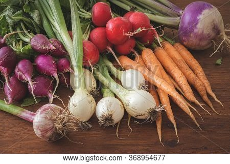 Fresh Spring Root Vegetables On Wooden Table. First Harvest Of Radishes, Garlic, Carrots, Spring Oni