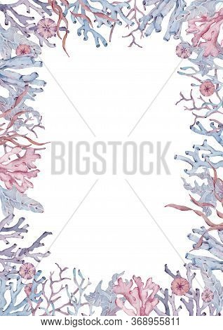 Frame Of Seaweed, Coral And Shells. Hand-drawn Watercolor Illustration. Underwater Life Template.