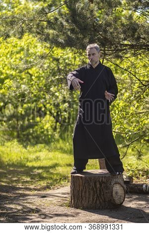 A Male Tai Chi Master Practices Qigong In Nature Standing On A Stump