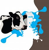 cow, milk and package, milk splash, vector illustration poster