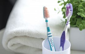 Close Up Shot Of Set Of Multicolored Toothbrushes