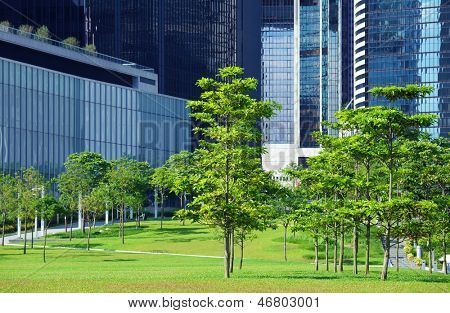 Green area and trees in CBD poster