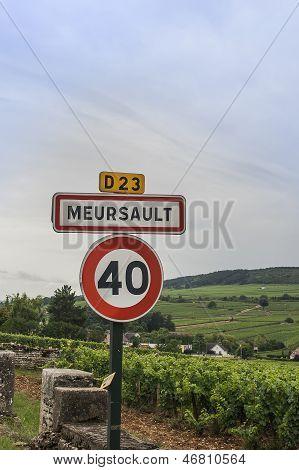 Meursault Vineyards And Sign