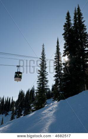 Gondola At Ski Resort, Backlit Trees