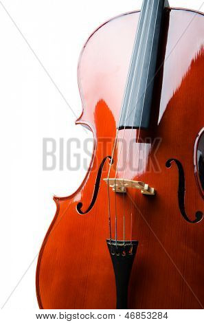 Violin isolated on the white background