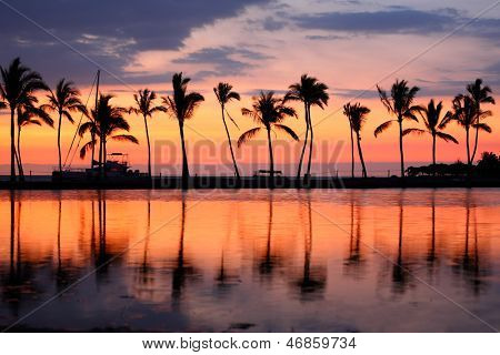 Paradise beach sunset or sunrise with tropical palm trees. Summer travel holidays vacation getaway colorful concept photo from sea ocean water at Big Island, Hawaii, USA. poster