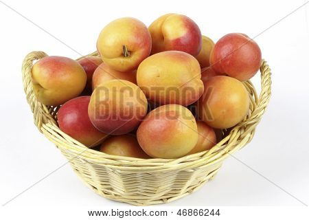 apricots in the basket on the white background