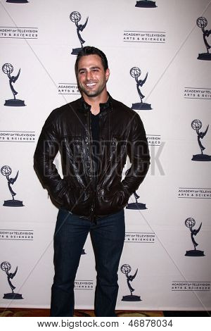 LOS ANGELES - JUN 13:  Marco Dapper arrives at the Daytime Emmy Nominees Reception presented by ATAS at the Montage Beverly Hills on June 13, 2013 in Beverly Hills, CA