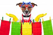 housewife dog with open arms happy to help poster