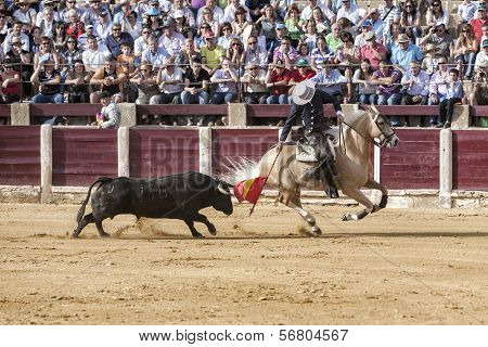 Spanish Bullfighter Fermin Bohorquez Bullfighting With A Flag Of Colours To Attract The Bull In Ubed