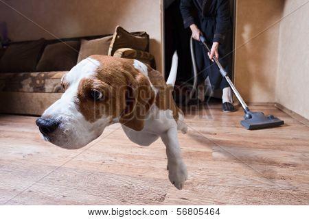 Very Terrible Vacuum Cleaner
