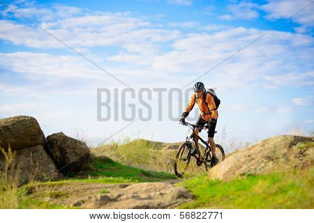 Cyclist Riding the Bike on the Beautiful Spring Mountain Trail poster