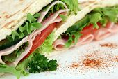 a closeup macro photo of a colorful sandwich with a shallow dof on white poster