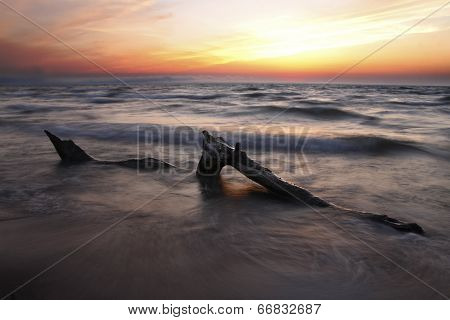 Driftwood On Lake Huron Beach At Sunset