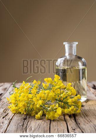 Rape flower on wooden table