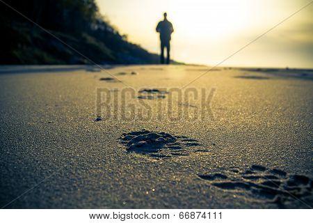 Nordic Walking Sport Run Walk Motion Blur Outdoor Track Trace Sand Beach Sea Figure