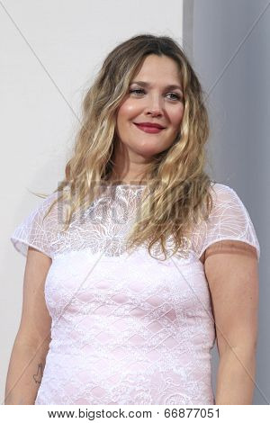 LOS ANGELES - MAY 21:  Drew Barrymore at the