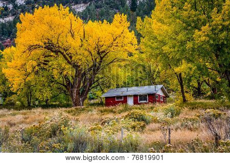 Old Red Cabin