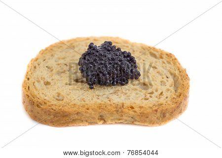Caviar over piece of toast