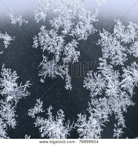 Frost On Windowpane In Winter Night