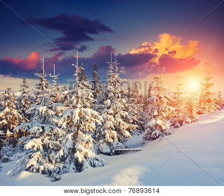 Great view of winter landscape in the sunny beams. Dramatic evening scene. Natural park. Carpathian, Ukraine, Europe. Beauty world. Retro filter. Instagram toning effect. Happy New Year!
