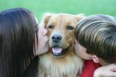 kids kissing dog on cheeks poster