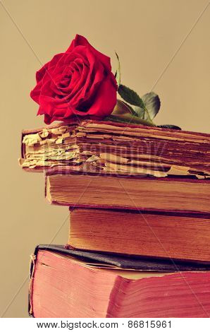 closeup of a red rose on a pile of old books