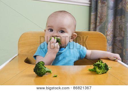 Cute Baby Eating Broccoli