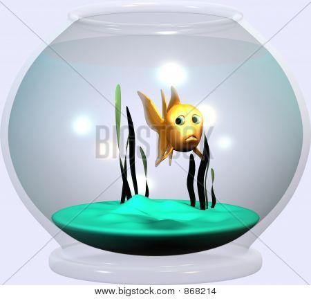 Goldfisch Glas 1