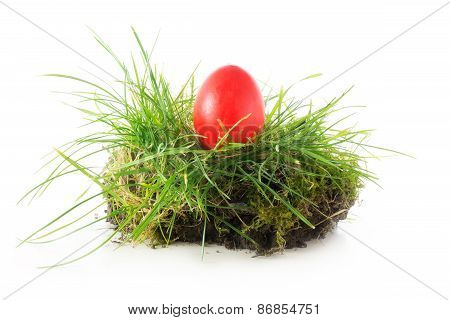 Red Easter Egg In A Nest Of Grass, Isolated On White