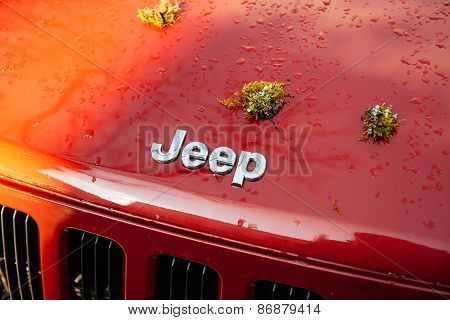 Jeep Logo On Car Hood With Moss Plant