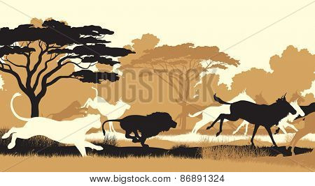 Cutout illustration of lions chasing a herd of wildebeest