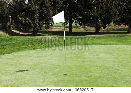 Blank Flagstick On A Putting Green In A Golf Course.