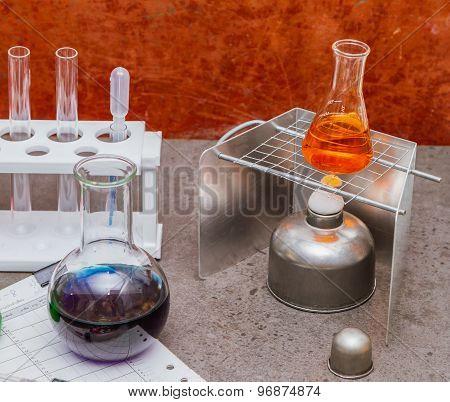 Group Of Laboratory.