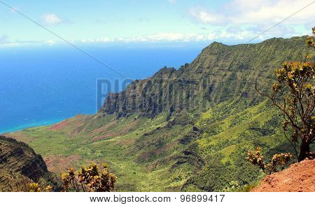 Kalalau Lookout Hawaii